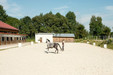 NHT - Natural Horsemanship Team (Bild 3)