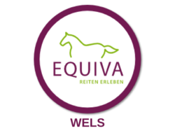 EQUIVA Store -  Wels